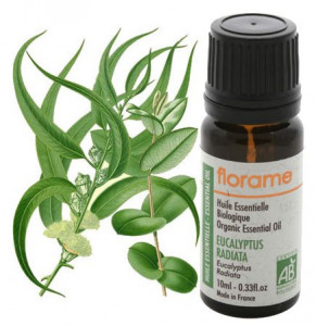 eucalyptus-radiata-10-ml-tp_3056007286844045497f