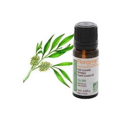 huile-essentielle-bio-arbre-a-the-tea-tree-10ml