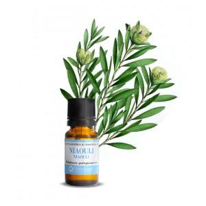 huile-essentielle-niaouli