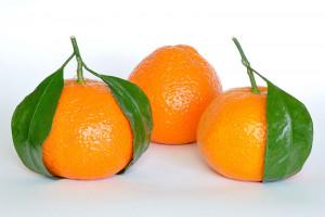 800px-Mandarin_Oranges_(Citrus_Reticulata)