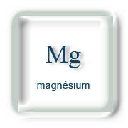 mineraux-magnesium-mg
