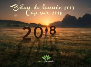 bilan-de-lannée-2017-cap-sur-2018-audrey-besson
