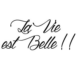 sticker-citation-la-vie-est-belle-5-ambiance-sticker-JER_043