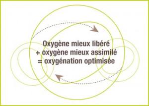 Schéma_oxygène_holiste