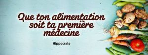 ob_973bfb_la-vache-rose-hippocrate-1