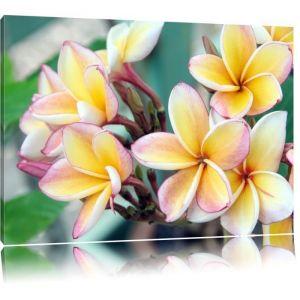 toile-imprime-fleurs-monoi-sur-hawaii-completeme